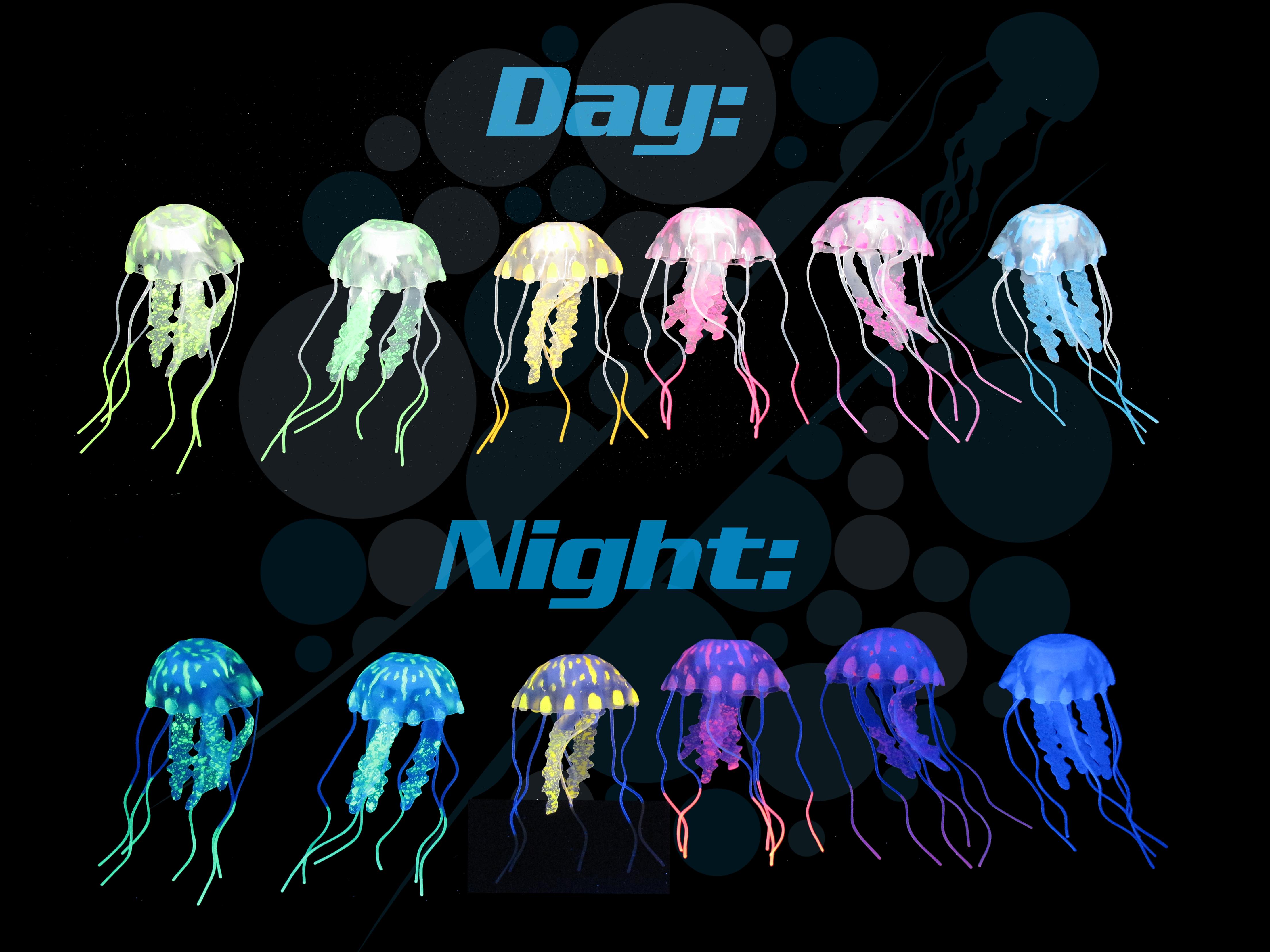 Jellyfish all
