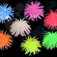 Sea Urchin / Anemone